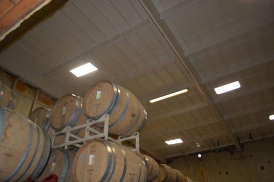 fermentation-room
